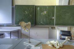 Loppies-Schule_der_Anatomie-7
