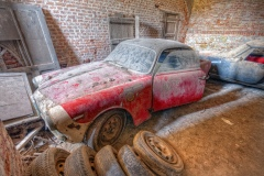 Loppies-Lost-Alfas-9