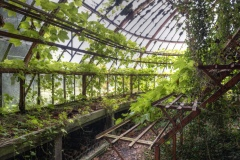 Loppies-Greenhouse-1