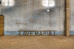Loppies-Manicomio_di_R_2-10