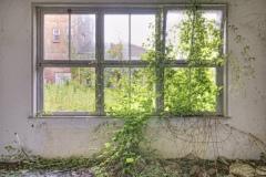 Loppies-Provinciaal_Ziekenhuis-4