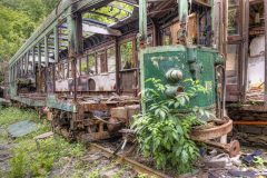 Loppies-Pub_Train-4
