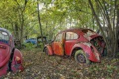 Loppies-Volkswagen_Forest-11