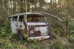 Loppies-Volkswagen_Forest-14