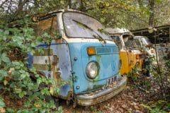 Loppies-Volkswagen_Forest-2