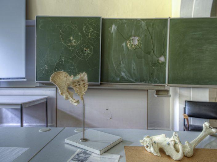 Haus der Anatomie (DE)